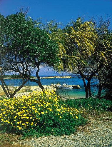 Другие города и курорты на кипре